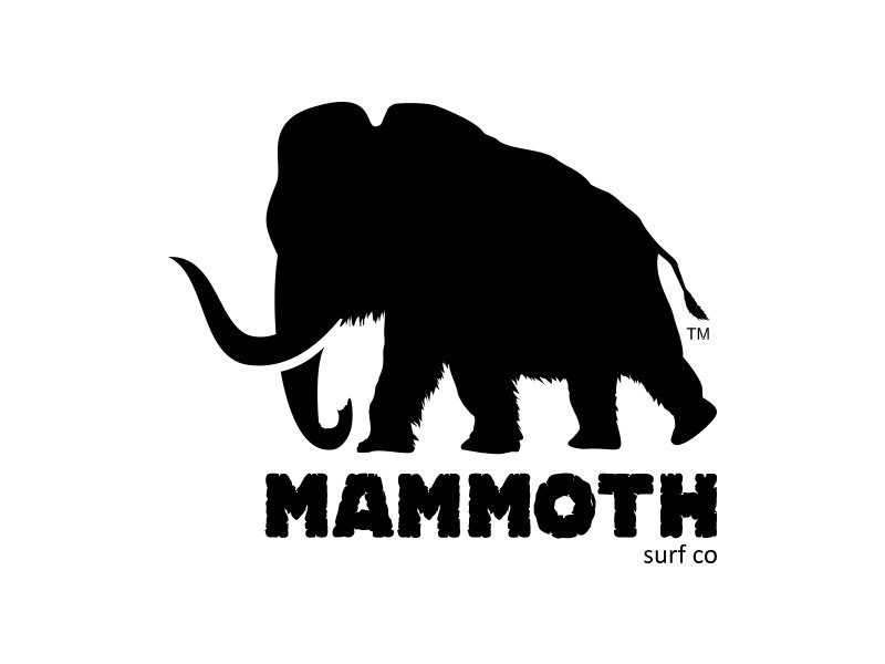 Mammoth Surf Co.